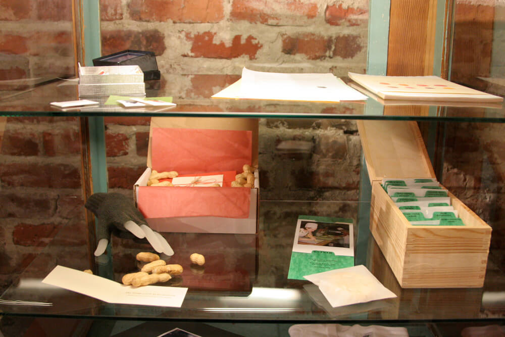 Close up of peanut and cookie projects in glass display case