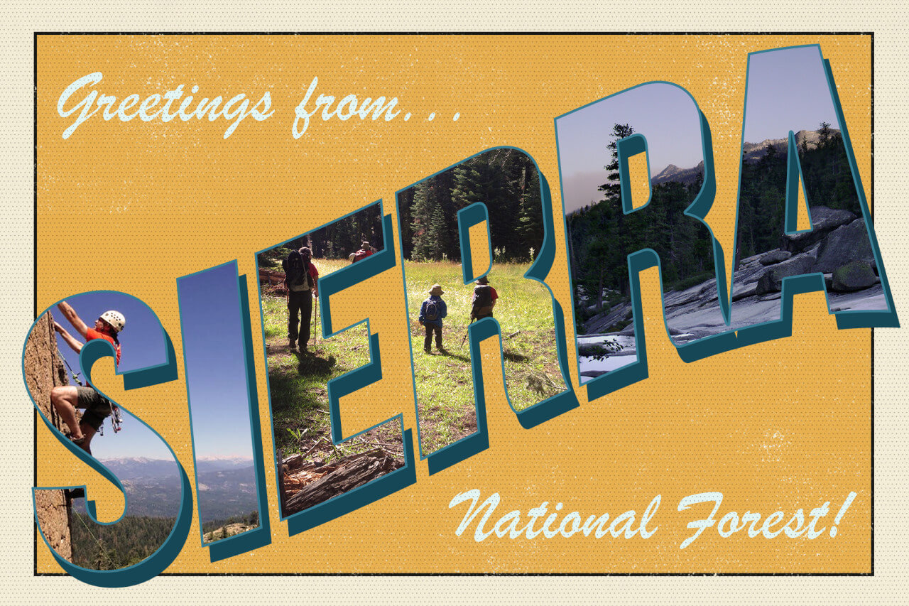Greetings from Sierra National Forest yellow postcard