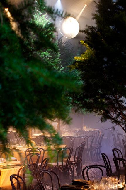 Bright light shining through trees onto dinner tables